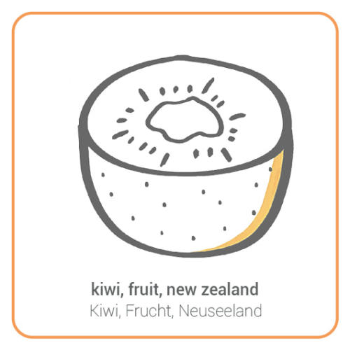 kiwi, fruit, new zealand